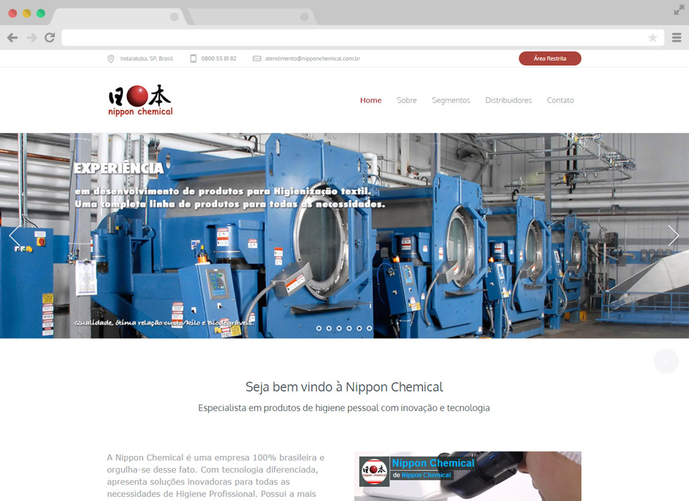 portfolio nippon chemical destaque